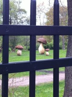 Botanisk hage kunstverk i pil sopp