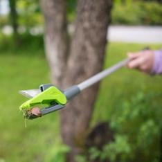 snail-pick-n-cut-4