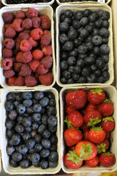 Organic, Blueberries, Strawberries and Raspberries