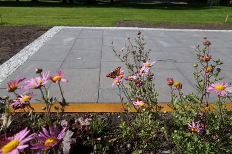 Den enkle hagen NMBU (2)