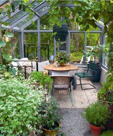 Barbeinthagen_drivhus og planter