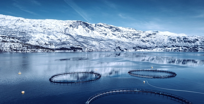 fish farm in Norway
