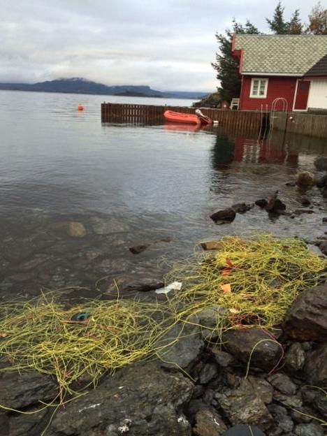Plastsøppel Ryfast_Naturvernforbundet Rogaland