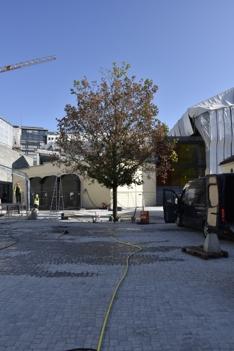 Museumsplassen 4